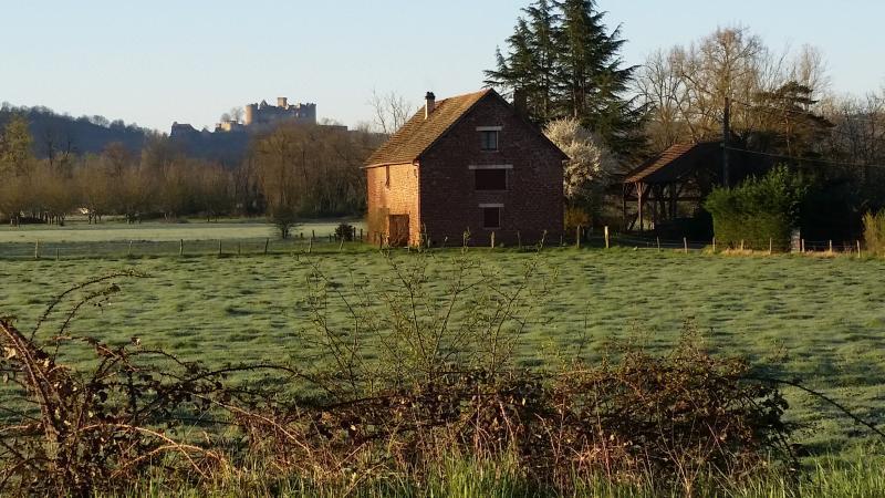 Blick auf die Château de Castelnau