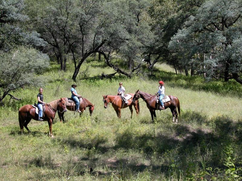 Cerro Colorado Ranch Sonora Mexico, holiday rental in Cananea