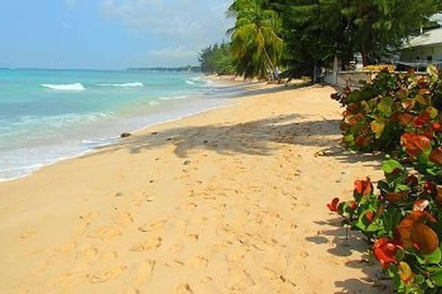 Tu playa!