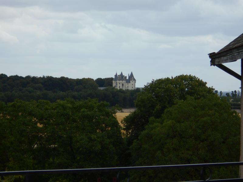 VIEWS OF THE CASTLE FROM THE TERRACE HEIGHT SEUILLY