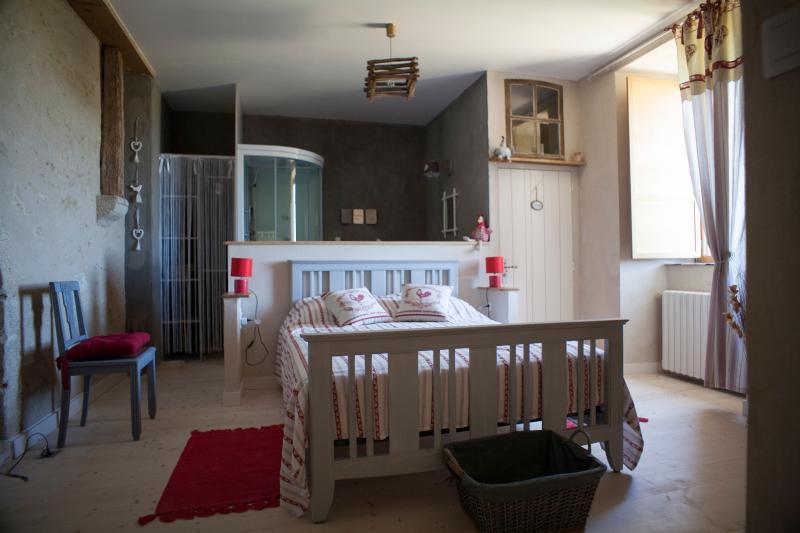 Logis de Riparfonds ' la basse Cour ', vacation rental in La Chapelle-Gaudin