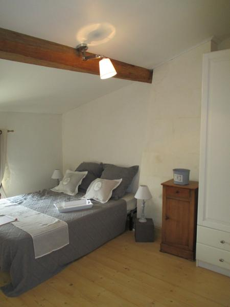 LE MOULIN DE JAMETTE, holiday rental in Saint-Savinien