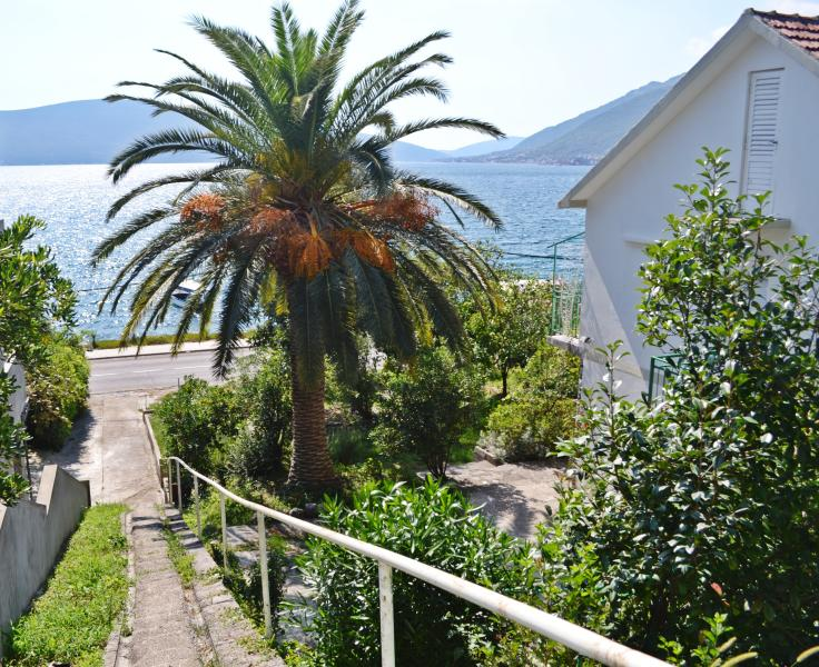 Steps from the Apartments 30 meters to the sea. Bayview Apartments Tivat Montenegro