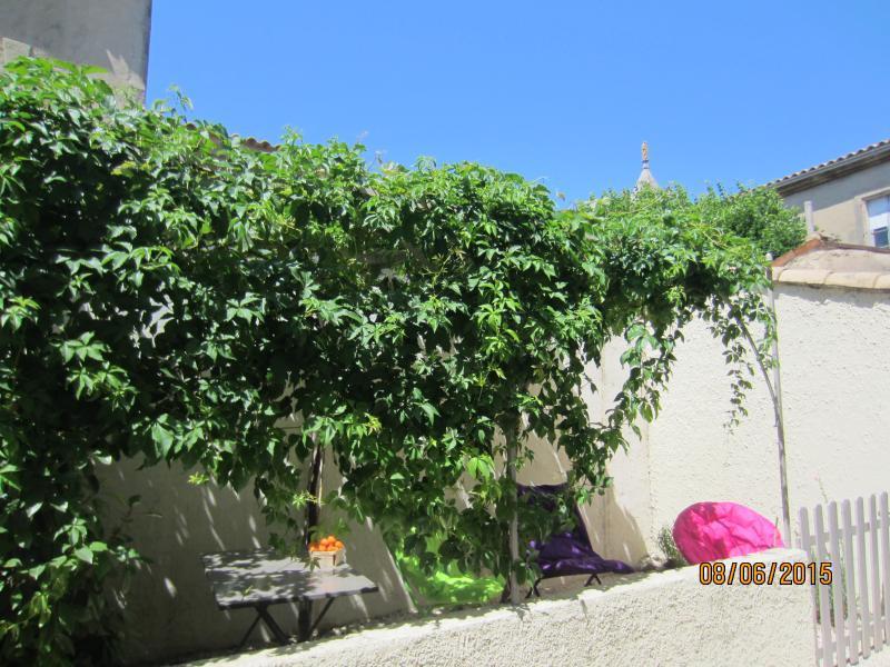 Gîte St.Christophe,12 Km Avignon,Provence Alpilles,Arles,Nîmes,Baux de Provence, vacation rental in Aramon