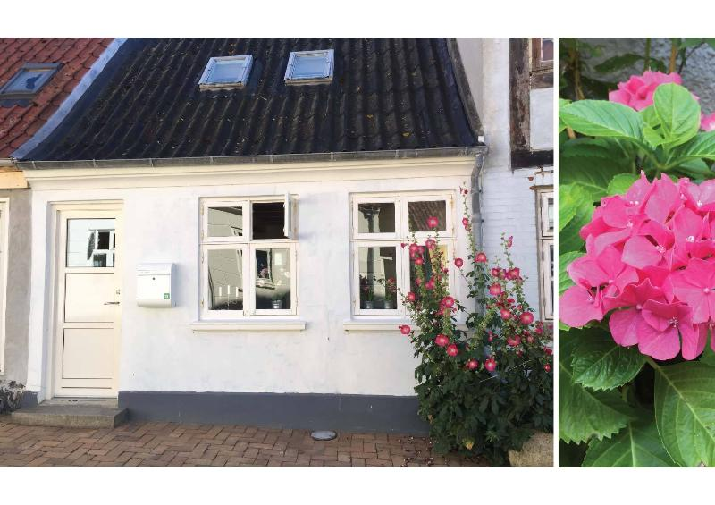 Cosy townhouse, vacation rental in Funen and Islands