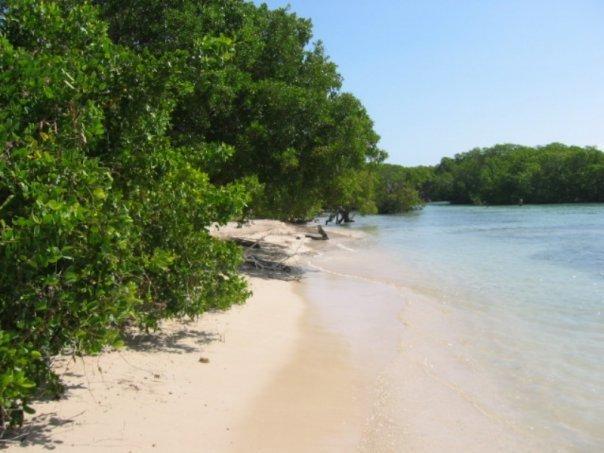 Playa Manglillo--trois minutes à pied de la maison.