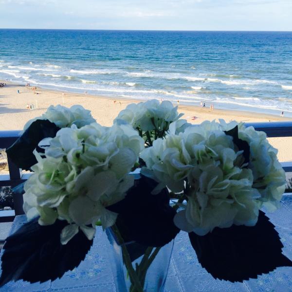 Cullera - Playa Dosel, holiday rental in Alginet