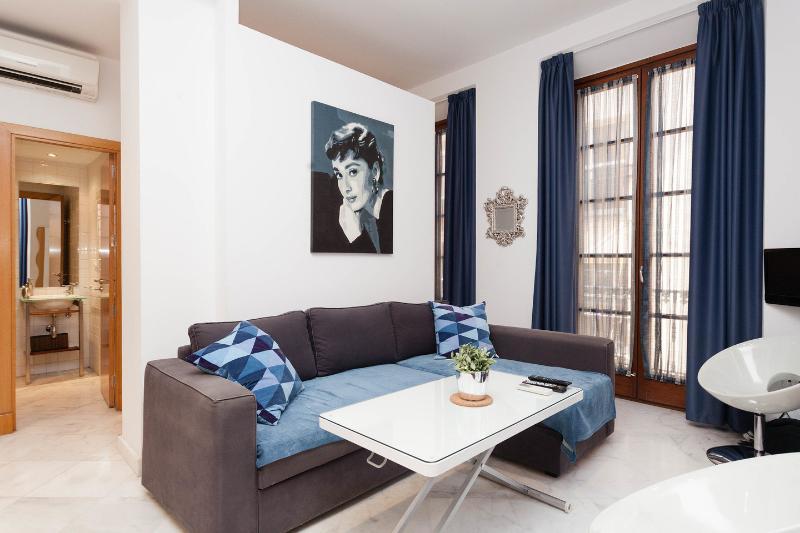 En pleno centro de Málaga acogedor apartamento, vacation rental in Malaga