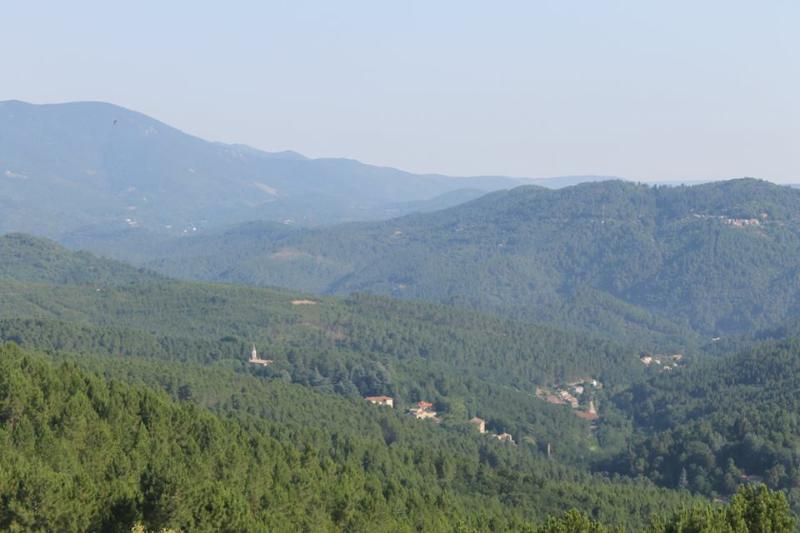 Vue sur le Mont Lozère et La Vernarède