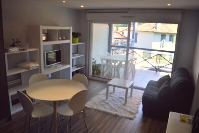 T2 hendaye avec terrasse, holiday rental in Hendaye