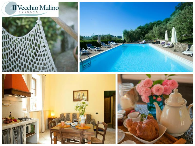 Charming Apt  private terrace wifi free, Pool Parking in the heart of Tuscany, holiday rental in Montalcinello