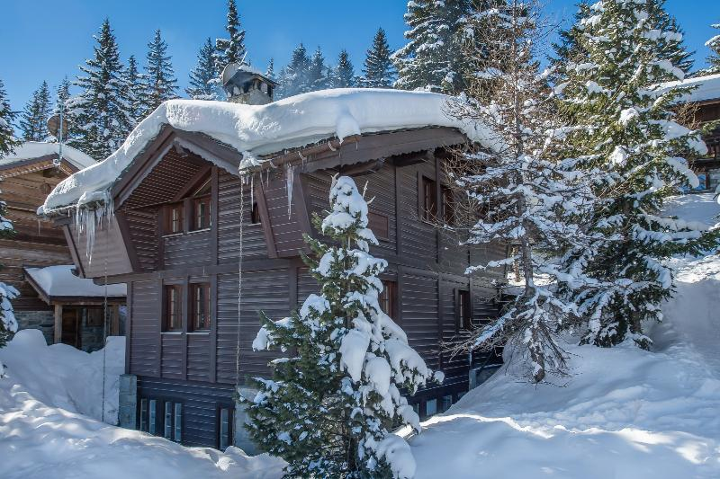 Chalet Apollonia Chalet in Courchevel