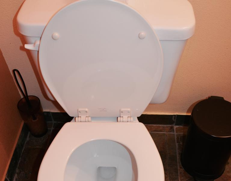 Brand New Toilet Covers