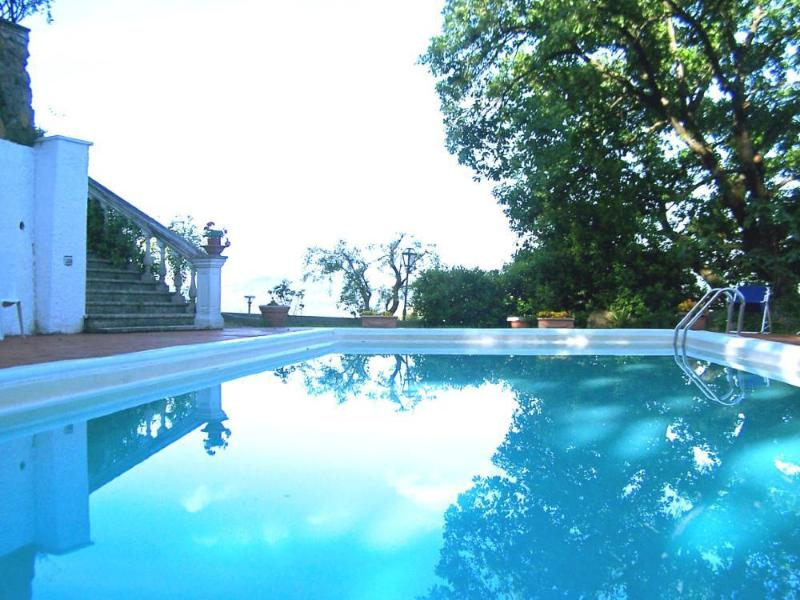 Swimming pool at dawn. All around secular oak nests, birds and blooming flowers