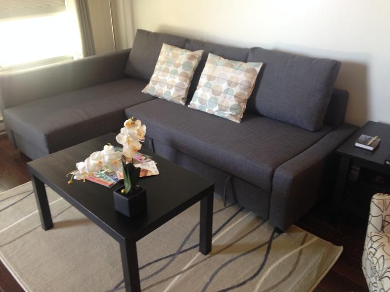 Queen sofa bed.  Comfortable bedding