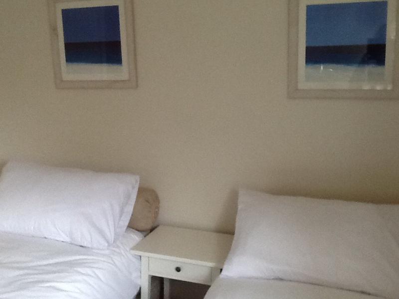 cama doble se puede dividir para hacer dos sencillos