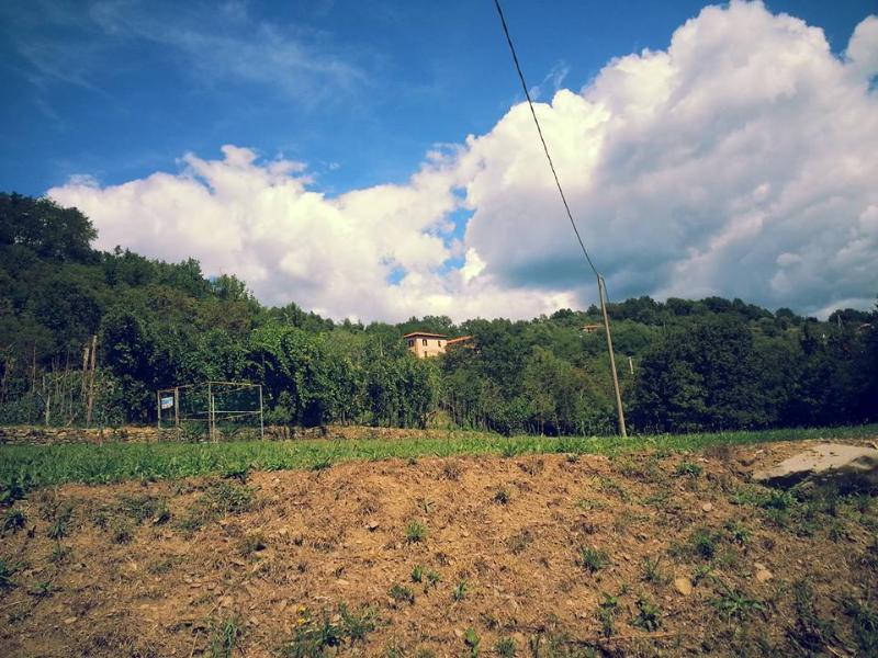 Ca' Giulietto in lunigiana vicino alle 5 terre, vacation rental in Borgo val di Taro