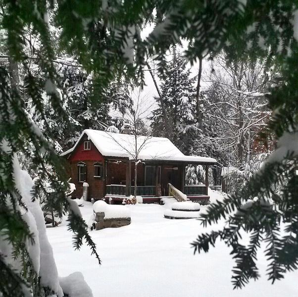 Off Grid with Cabin and Lean to, holiday rental in Northville