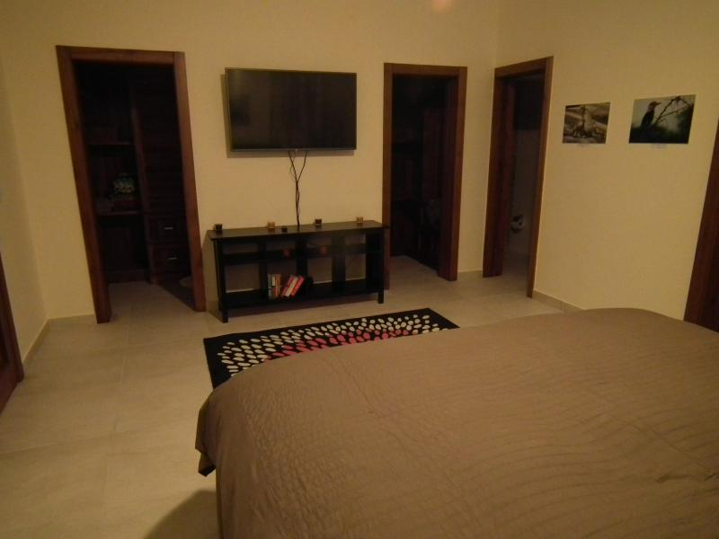 View from the corner of the master bedroom towards the walk-in closets and 50' TV