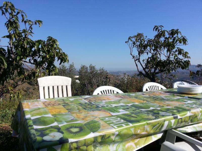 Mesa grande para comidas en el jardin