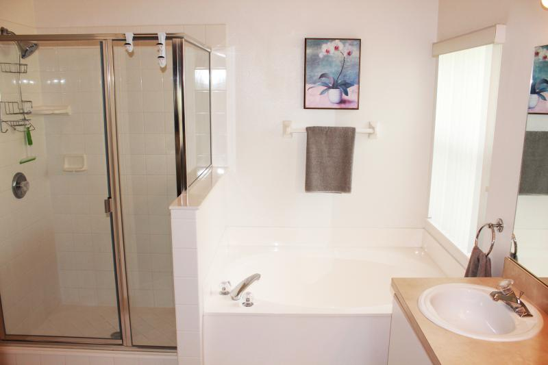 king master bath with double vanity and walk in closet