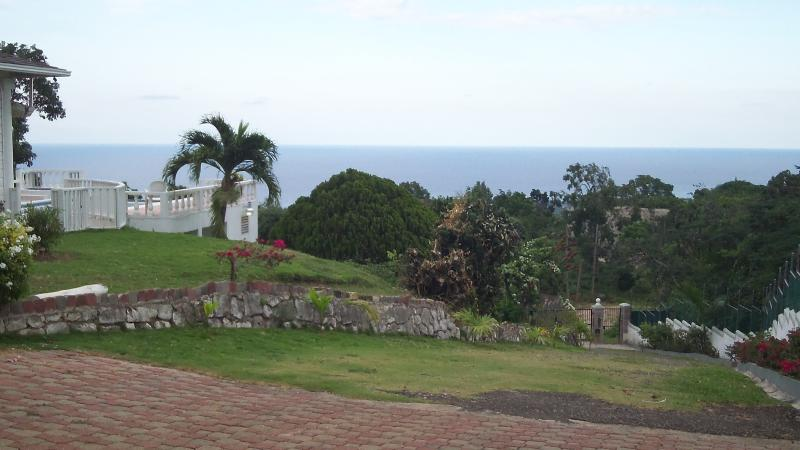 Part of frond grounds