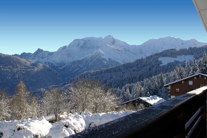 Vue sur le Mont-Blanc depuis le Balcon