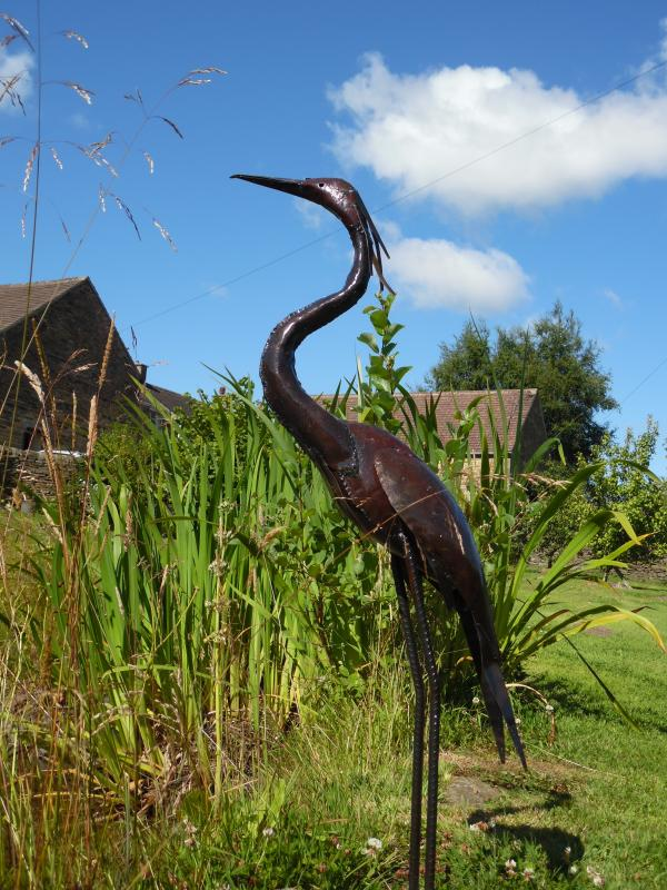 Henry the Heron in our Orchard