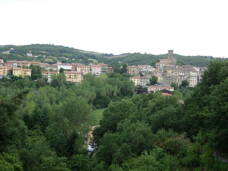 Il Pino Amiata, vacation rental in Arcidosso
