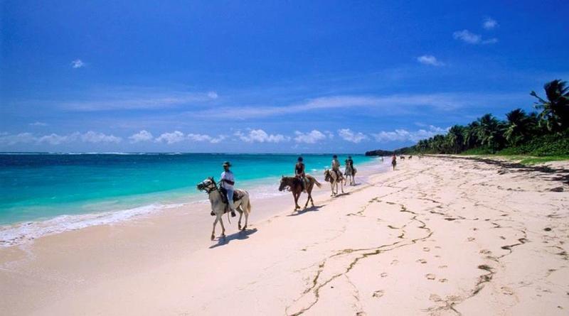 Promenade inoubliable à cheval sur les plages de Petite et Grande Anse Macabou