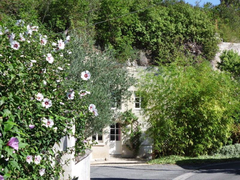 LE TROGLO Gîte Troglodytique classé 3 Epis  Gîtes de France à 6 Km de CHINON
