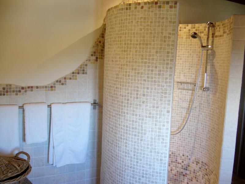 Bathroom with round travertin shower