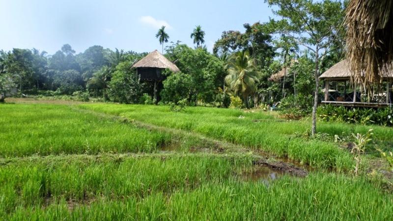 HUMA TERRA-  NADU, vacation rental in Hiniduma
