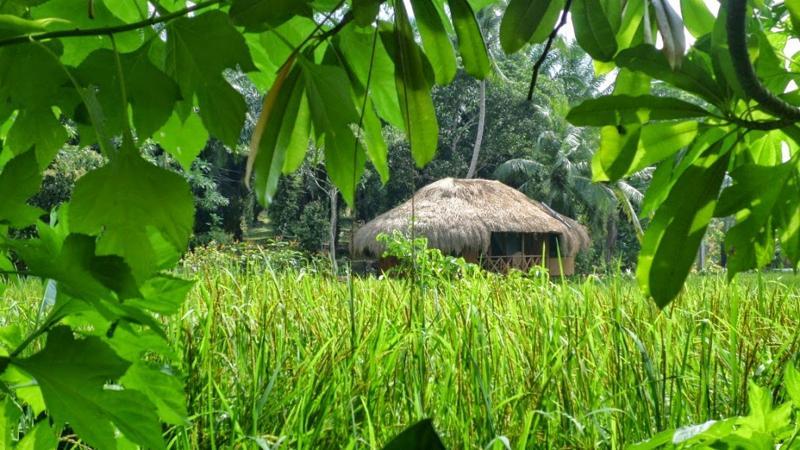 HUMA TERRA - HEENATI, vacation rental in Hiniduma
