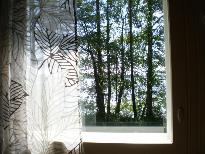 View from sauna