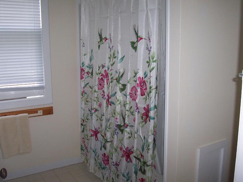 The bathroom shower area.