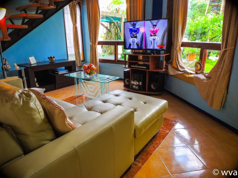 Room, TV 50 inch deck overlooking the garden and front of the house