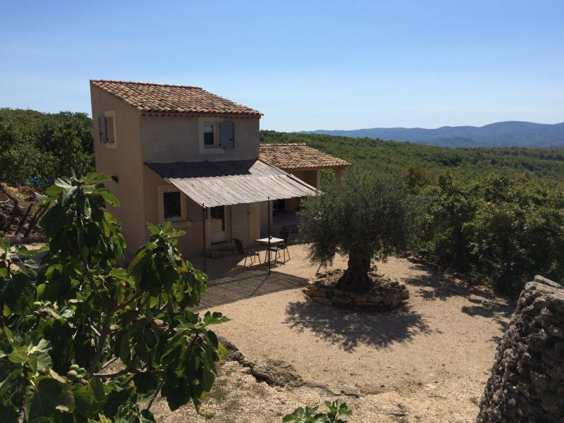 Le Gîte de l'Olivier (Luberon), vacation rental in Oppedette
