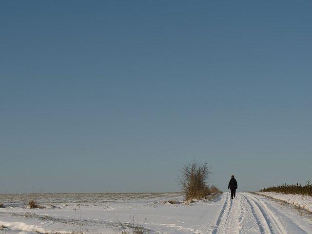 Ein klarer Wintertag