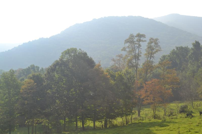 Enjoy this NC mountain in a relaxing country setting.