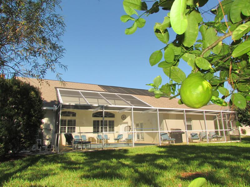 Al sur frente a patio y extensión a lado de la casa de detrás del árbol de limón en conserva