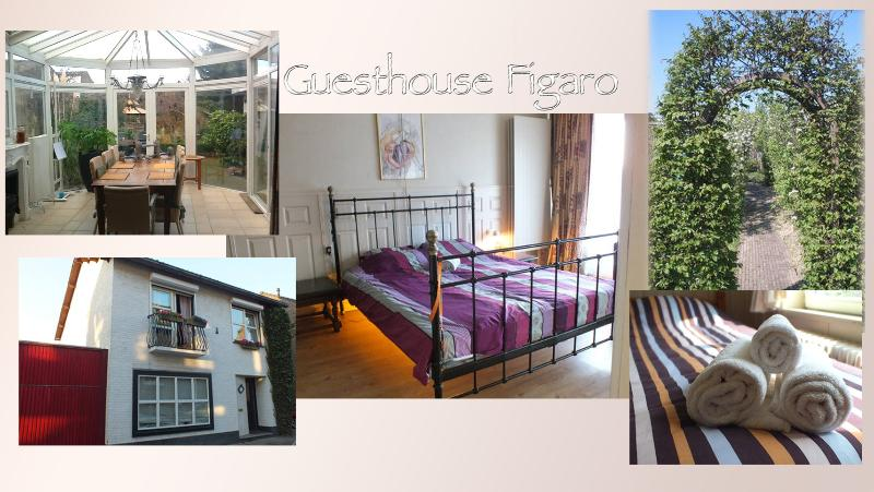 Guesthouse Figaro, holiday rental in Gronsveld