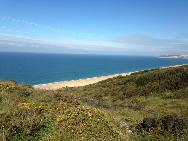 Stunning walks along coastal paths