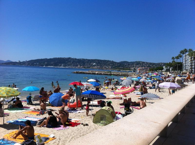 3 Bedroom flat 100m from Beach (SKEMA Students Welcome), alquiler vacacional en Juan-les-Pins