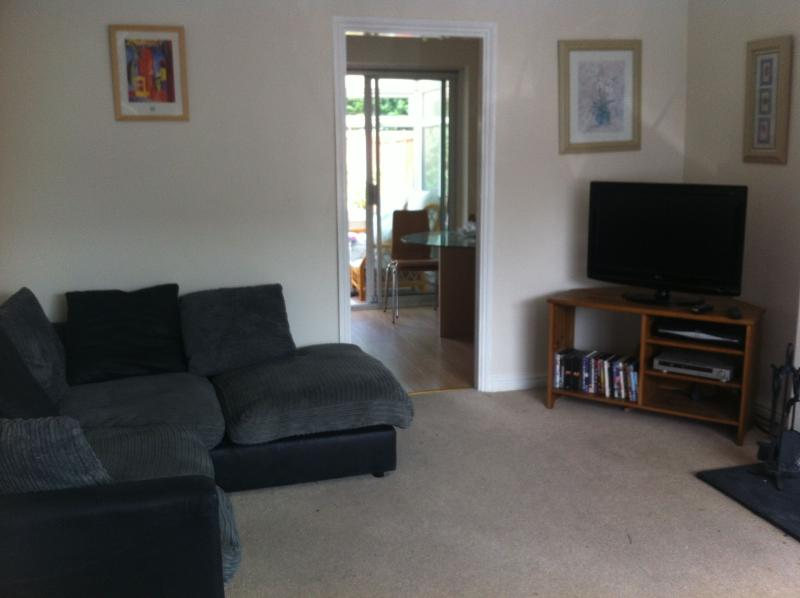 The living room with a large TV, comfy corner sofa and a supply of DVDs.