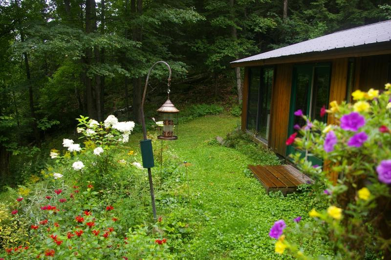 At Cooper Lake  'Romantic'Cedar Log Cottage Free Algonquin Pk Pass, WIFI,, holiday rental in Algonquin Provincial Park