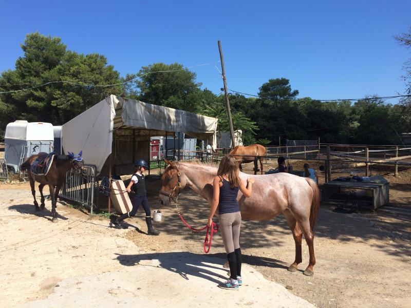 Horse riding school (5 mins away)