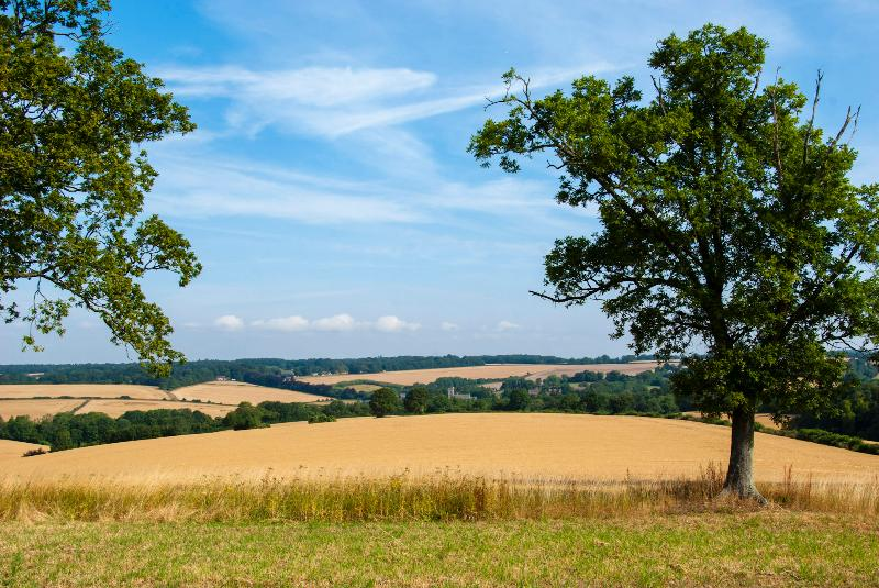 The stunning view over the Meon Valley