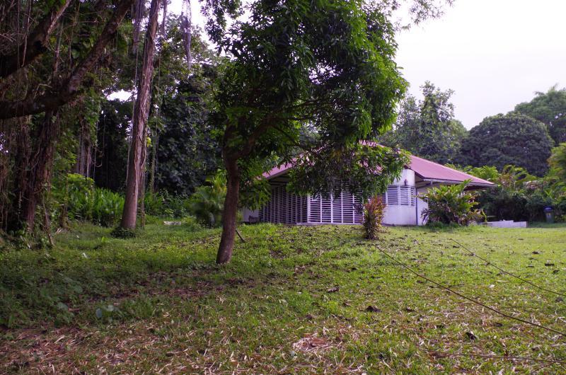 Vue d'ensemble de la maison et du jardin arboré
