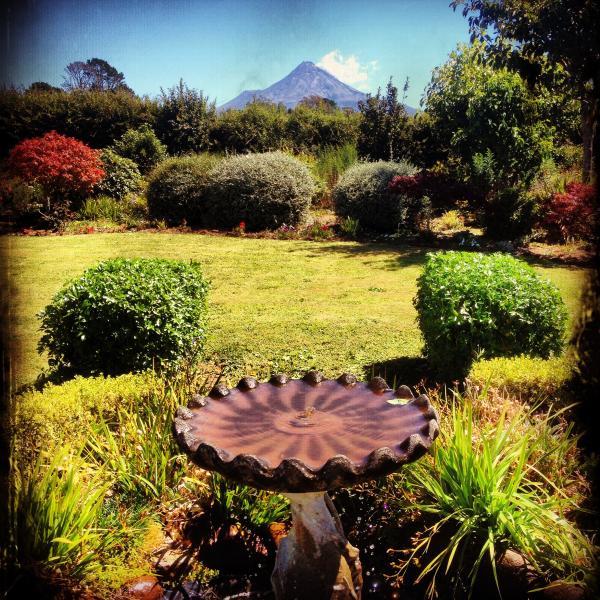 Lovely country garden overlooking Mt Taranaki